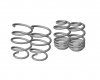 BMW E60 SEDAN - SPORT LOWERING SPRINGS (50|35)