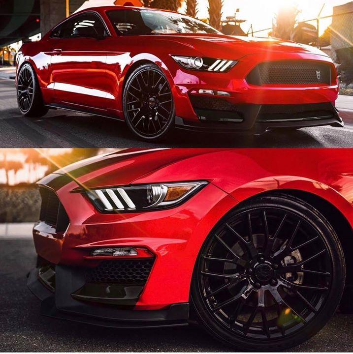 Ford Mustang Vogtland Tieferlegung